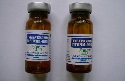 Туберкулин