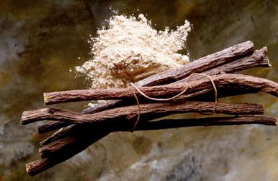 корень солодки