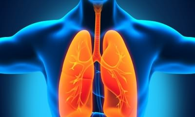 Цефазолин при болезнях дыхательной системы